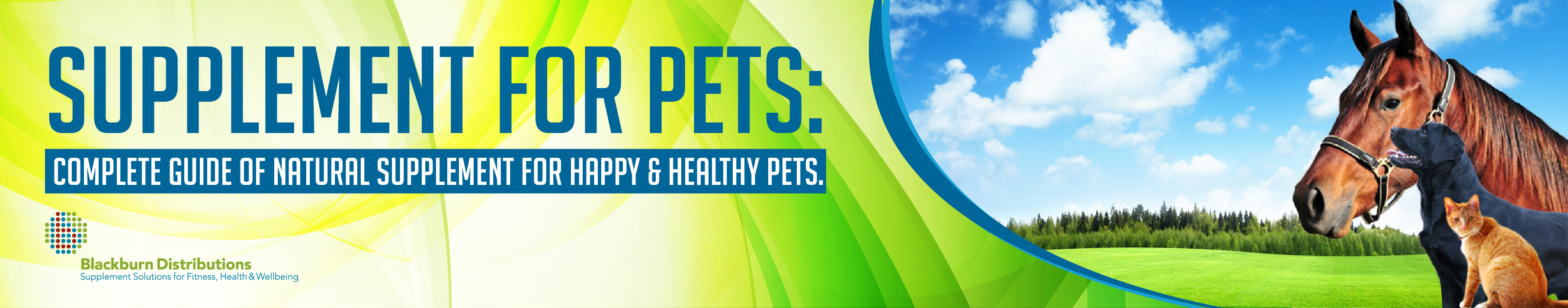 Supplement for Pets: Complete Guide of Natural Supplement For Happy & Healthy Pets