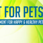 Supplement for Pets: Complete Guide of Natural Supplement For Happy & Healthy Pets.