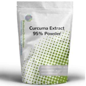 Curcuma Extract 95% Powder